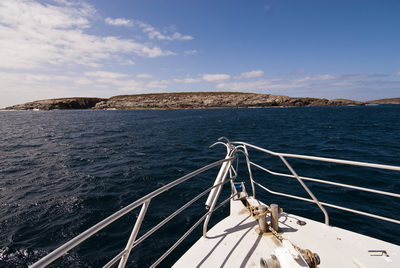 Photographing Great White Sharks - The Neptune Islands in South Australia