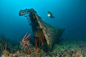 Guide to Diving New Ireland - Kavieng's Der Yang wreck