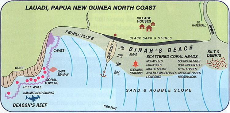 Deacon's Reef - Lauadi Dive Site Map