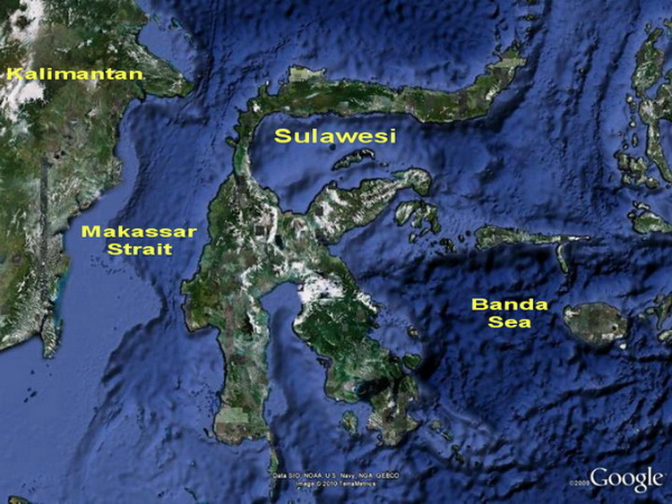 Diving Indonesia Sulawesi Overview