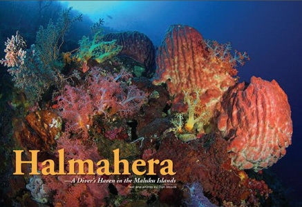 Diving Halmahera