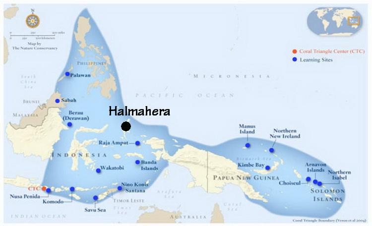 Diving Indonesia: Halmahera - Scuba Diving Overview