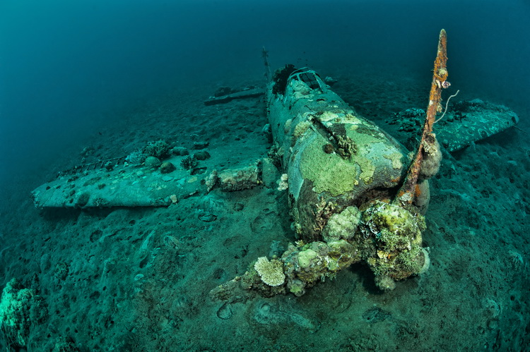 The Aircraft Wrecks of Papua New Guinea - The Mitsibishi Zero Wreck in Kimbe Bay