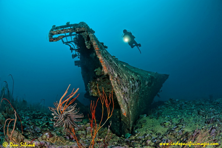 Kavieng dive sites - Kavieng's Pacific Ocean dive sites - the Der Yang Wreck