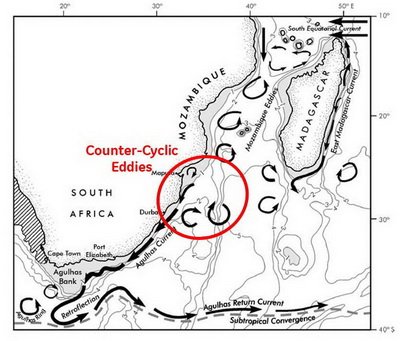 Major currents in Southern Mozambique - Tofo Megafauna