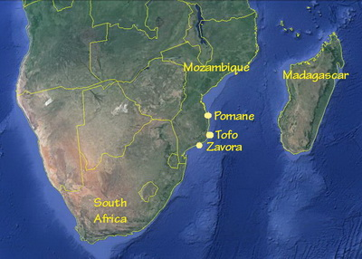 Tofo Megafauna - Southern Africa map and the Zavora to Pomene corridor