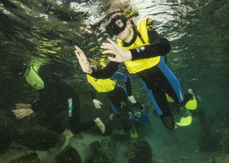 Swim with the Manatees of Crystal River - Tourists entering the Three Sisters Spring