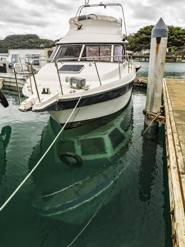 Vavu'a whale swimming operators - last year's dive boat