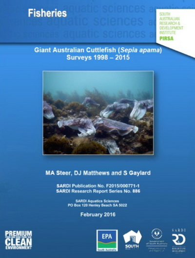 Cuttlefish Conservation in Whyalla