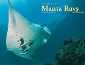 The Manta Rays of Milne Bay