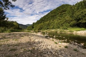 Japan_16_Aug_D03_Land_026_nik_750