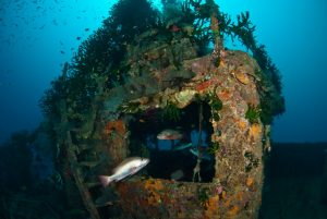 Guide to Diving Port Moresby - Wheelhouse of the Pacific Gas