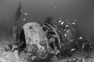 Guide to Diving New Ireland - WWII Aircraft Wreck