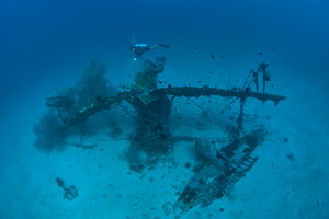 Guide to Diving New Ireland - The Deep Pete Wreck