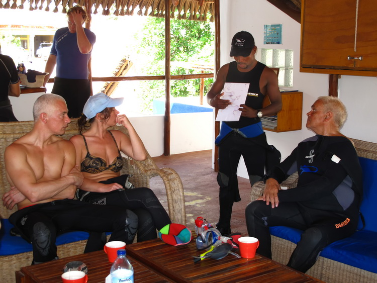 Need to Know To Dive Tofo - Dive Briefing