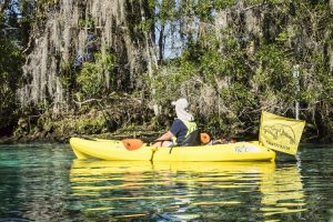 Manatees of Crystal River - Manatee Watch volunteer Warden