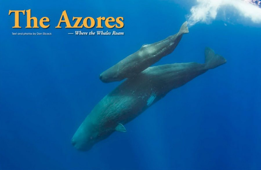 Azores_XR_Cover_900