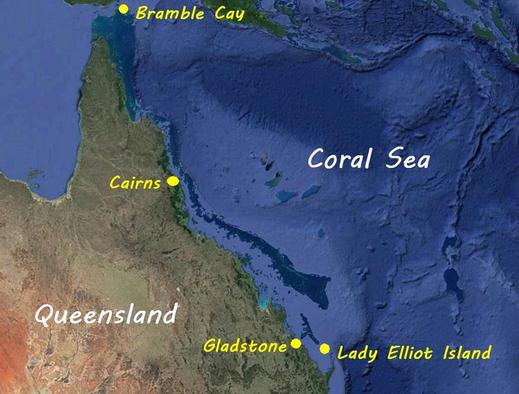 Australian Scuba Diving