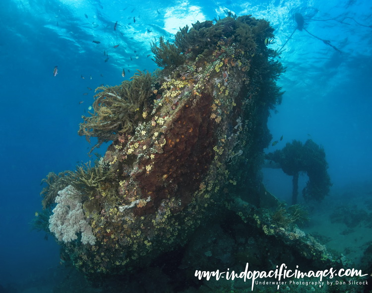 Japanese Wreck in Bali