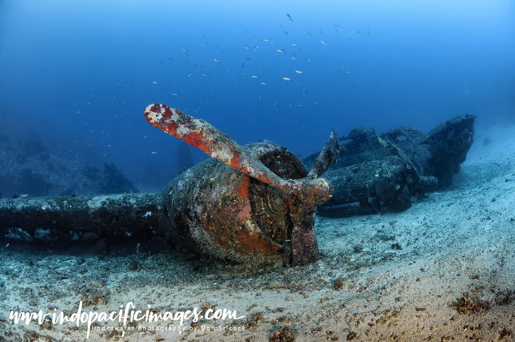The Best Aircraft Wreck Dives in PNG