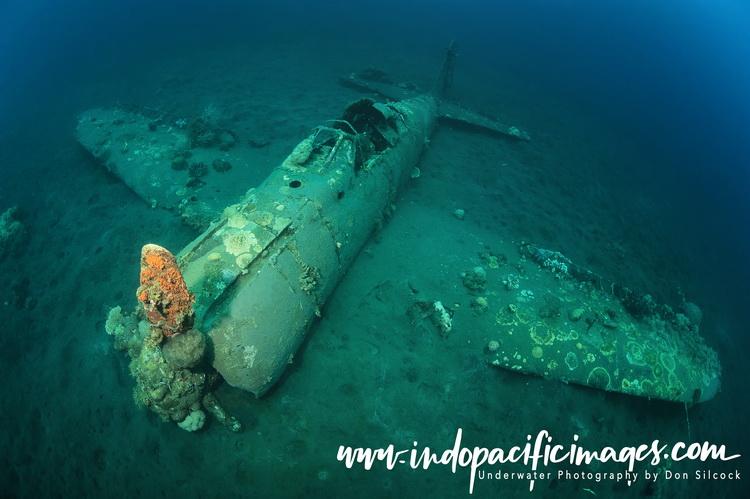 Kimbe Bay Zero Wreck