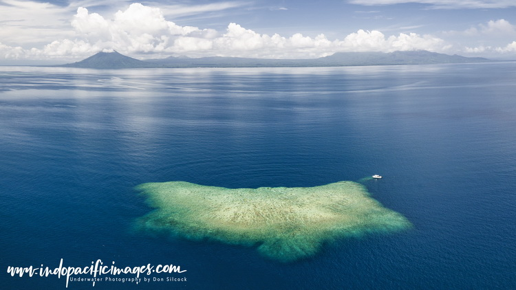 Kimbe Bay Reefs