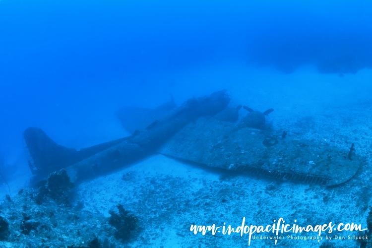 Diving Tufi