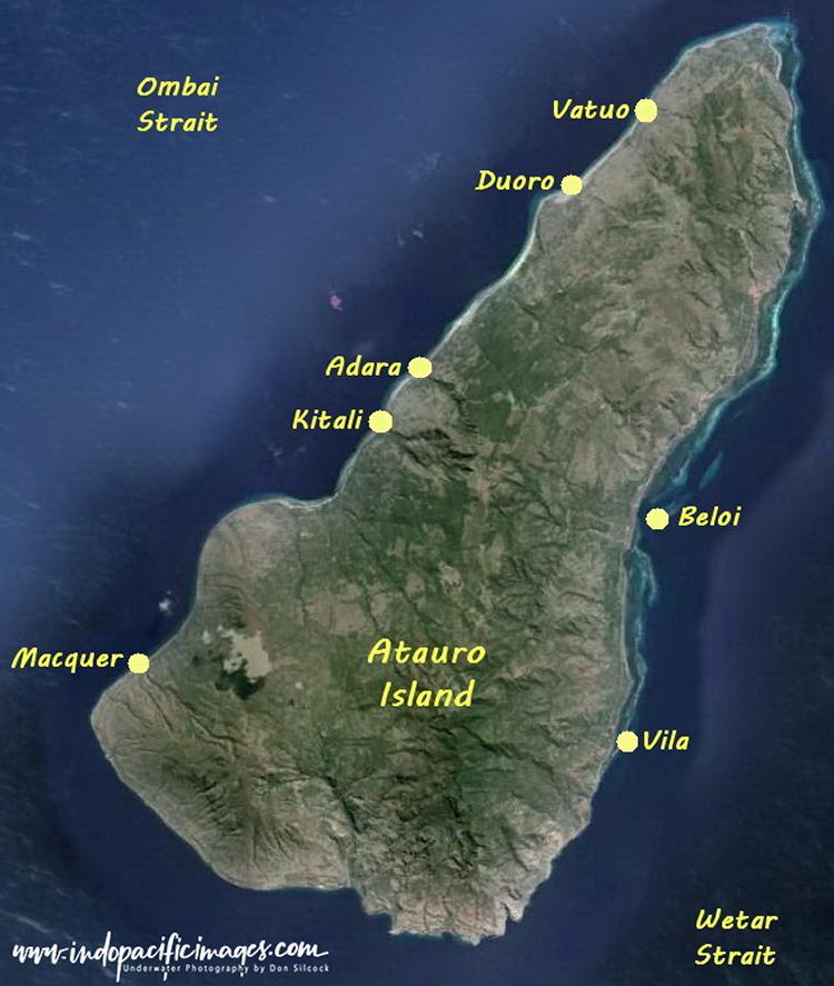 Atauro Island Diving