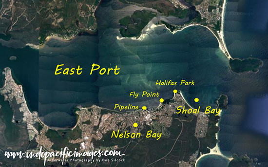 Nelson Bay Dive Site Map